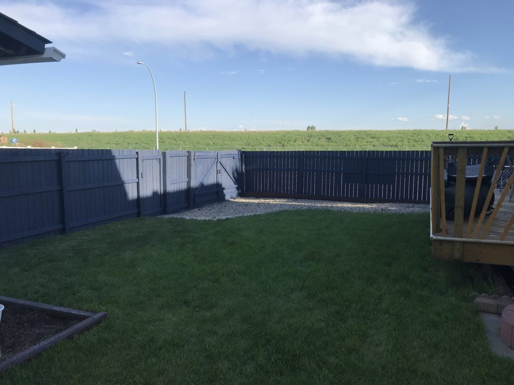 Backyard area with parking pad available